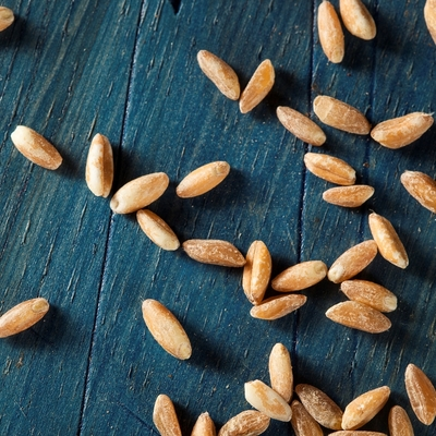 Nourishing Whole Grains for Fall