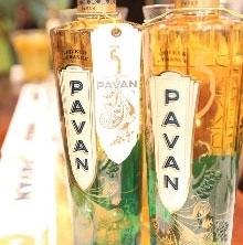 Pavan c5.jpg