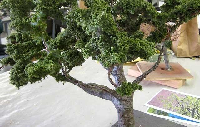 Treebug c8.jpg